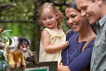 Family at Zoo with Monkey
