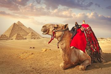 Wonders of Egypt and Jordan Experience
